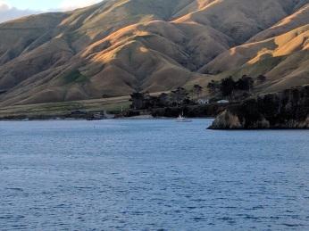 Ferry Crossing to Wellington:Phot Credit Hayley Burrell