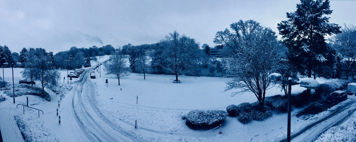 Classes cancelled as campus becomes a winter wonderland