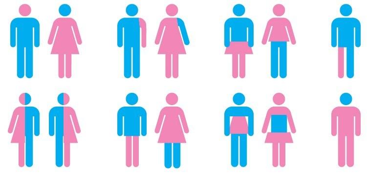 GenderGraphic-e1433379746312